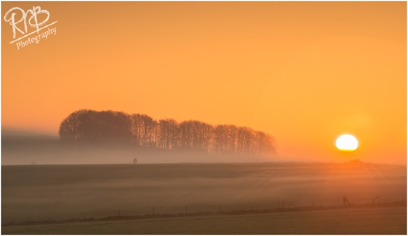 Roundway Dawn - Wiltshire & West Country Landscapes