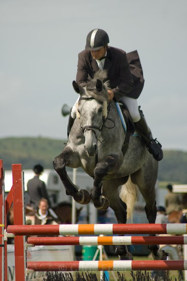 8 - Equestrian Photography