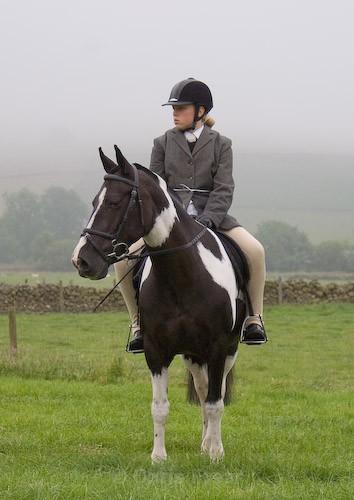 10 - Moniaive Horse Show 2008