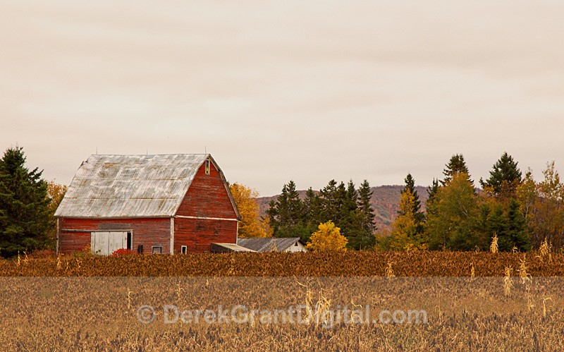 Vintage Red Barn - New Brunswick Canada - Old Barns & Buildings