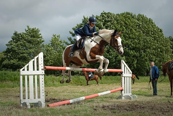 14 - Moniaive Horse Show 2010