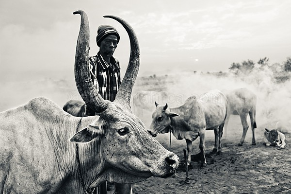 Elijah Garang, Dinka Cattle Farmer, Juba, South Sudan