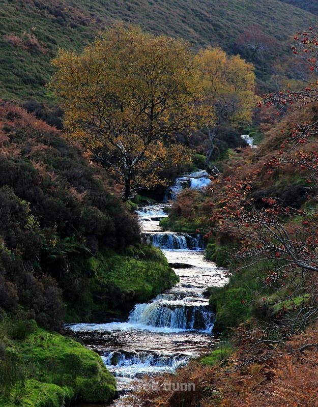 Fair Brook in autumn - Peak District