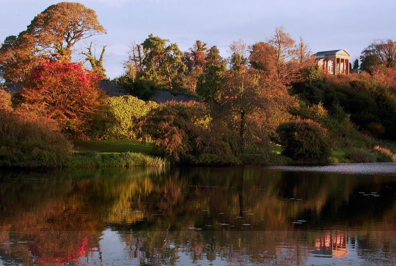 Autumn by the Temple Water - Castleward Landscapes