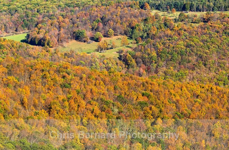 - Shenandoah Valley Virginia