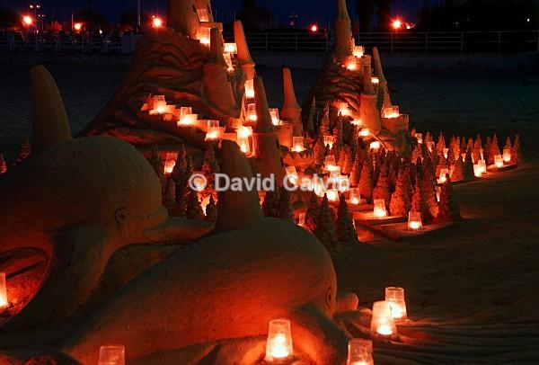 Sand Sculptures - Nocturnal