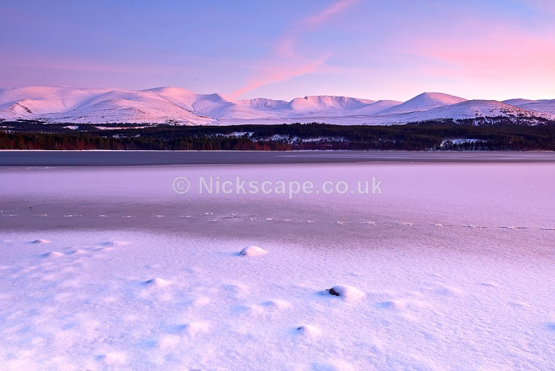 Winter at frozen Loch Morlich   Cairngorms Photography   Scotland Landscape Gallery