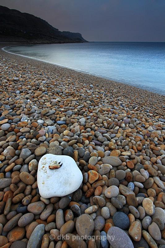 _MG_1497 Chesil Beach. - COAST - Dorset