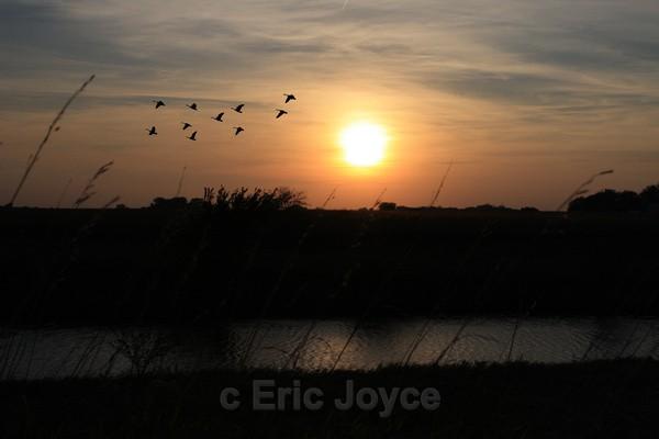 Fall Sunset - SW Minnesota
