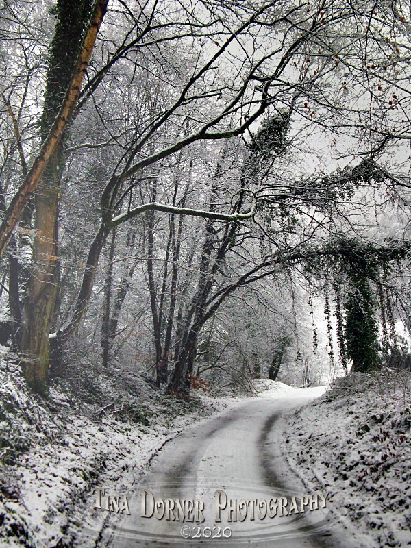 View through snow on hill lane,Lydbrook. Winter Landscape portfolio by Tina Dorner Photography,  Forest of Dean and Wye Valley, Gloucestershire
