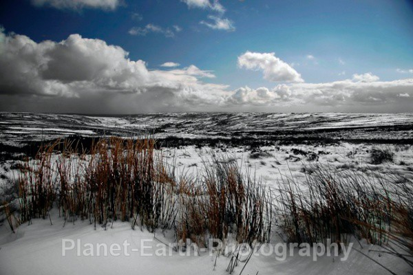 Blakey Ridge - Landscapes / Seascapes