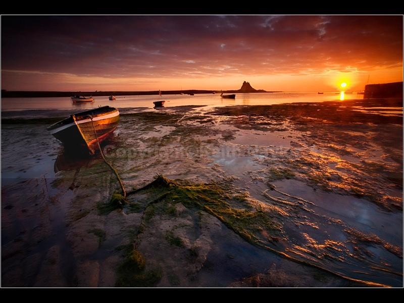 Lindisfarne-Coble-II-1024 - 2007
