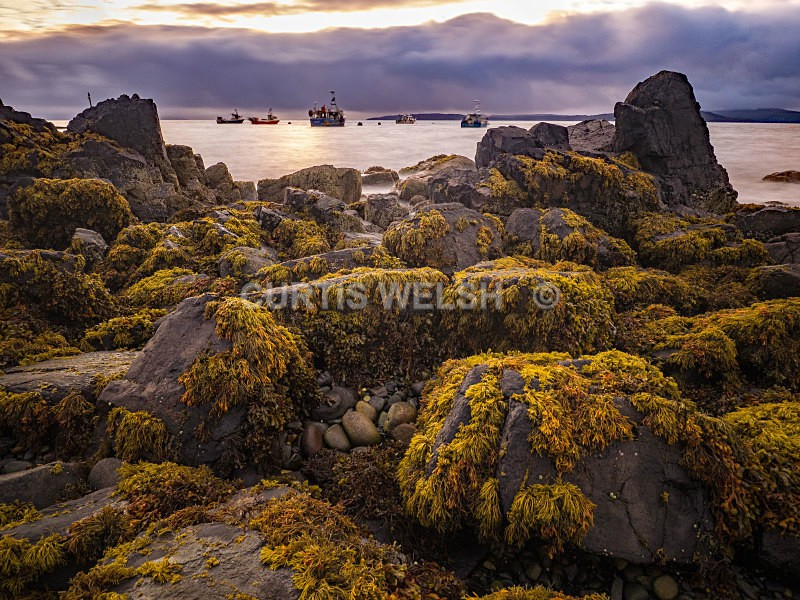 Shore Elgol - Curtis Welsh - THE SCOTSMAN - READERS GALLERY