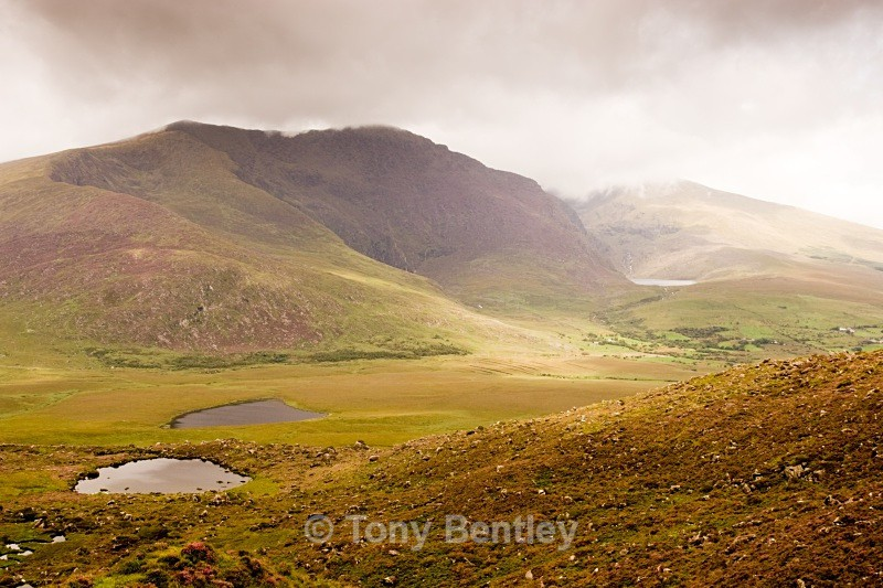 Irish landscape - Landscapes
