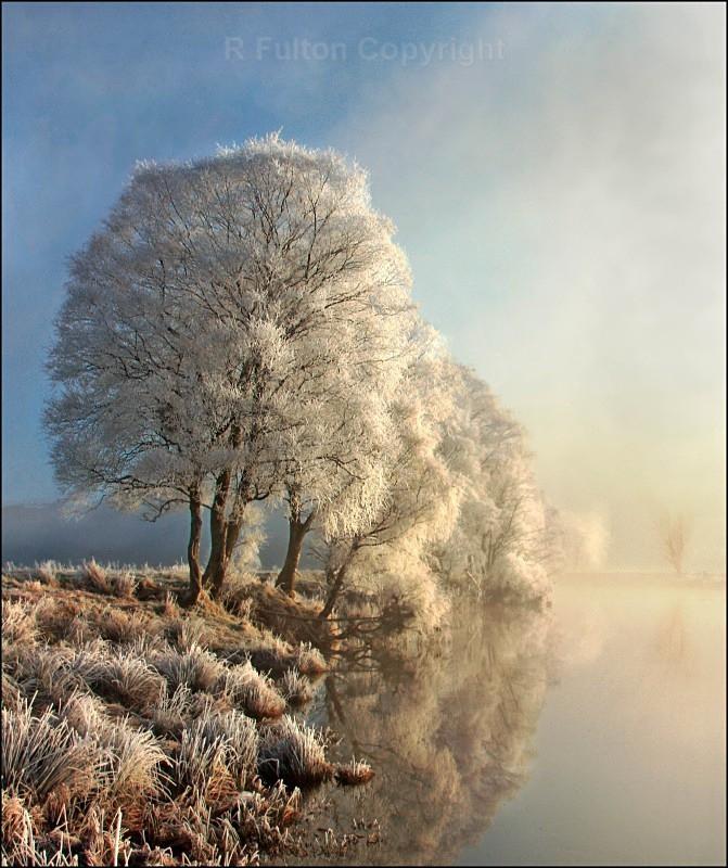 Winter Light - Landscapes