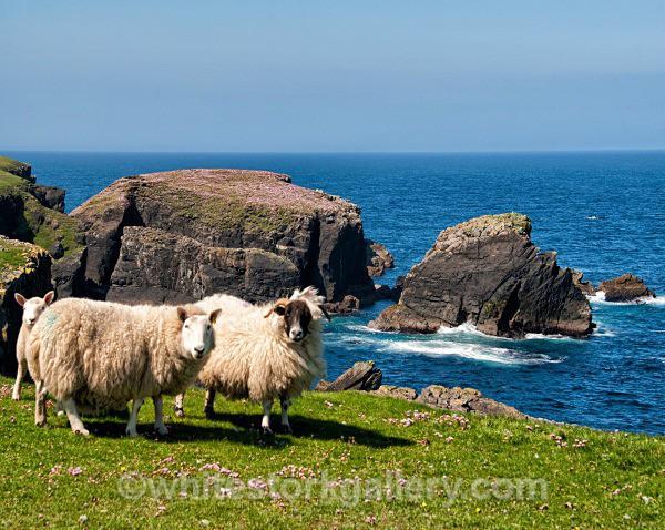 Port Of Ness Coastal Walk - Scottish Highlands