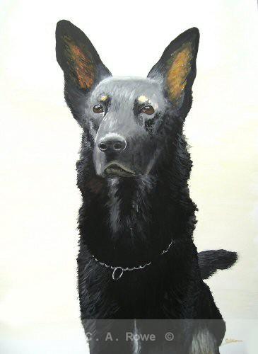 German Shepherd 1 - Gallery 2
