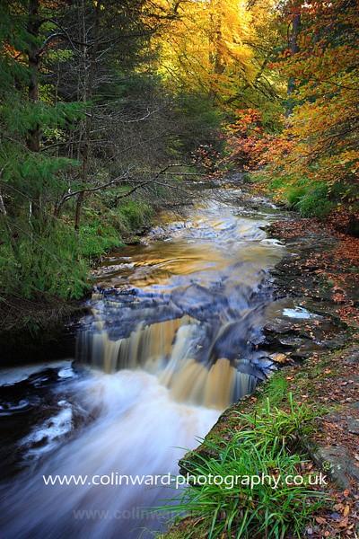 Autumn Falls  Ref 6773 - County Durham