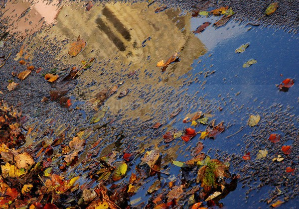 Art and Nature , Demeter Walks - Art And Nature