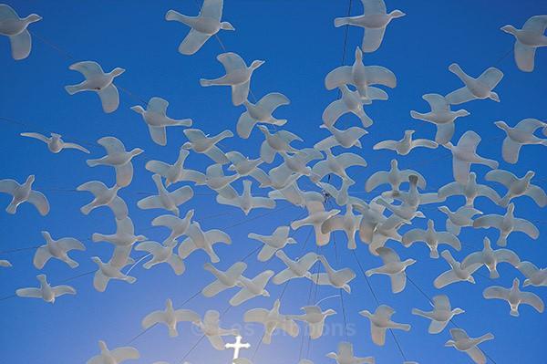 peace birds - Amalfi Coast