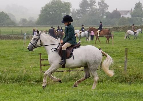 15 - Moniaive Horse Show 2008