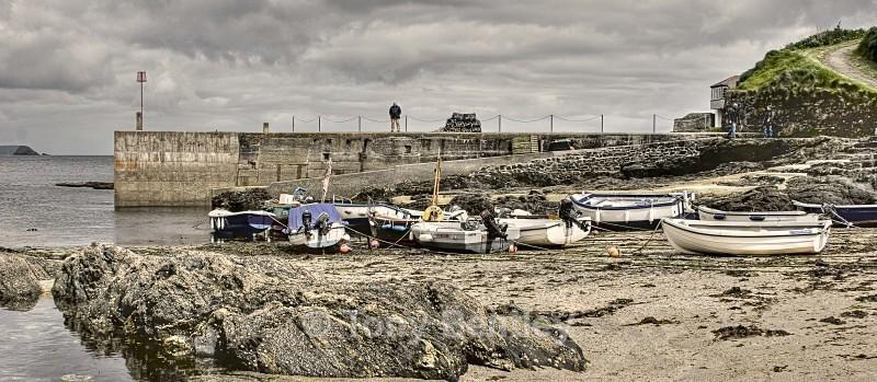 Cornish Cove - Landscapes