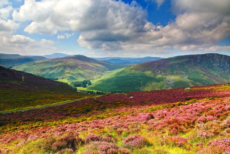 Above Wicklow - Landscapes of Ireland - Glendalough and the Wicklow Mountains