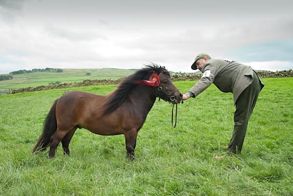 4 - Moniaive Horse Show 2010