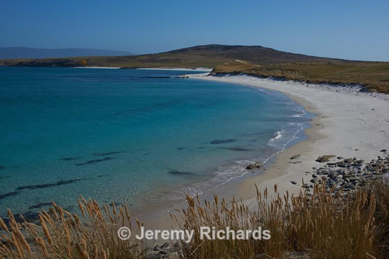 Leopard Beach - Carcass Island