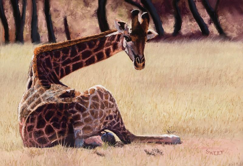 Giraffe - Paintings