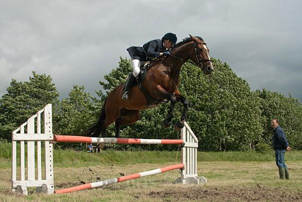 18 - Moniaive Horse Show 2010