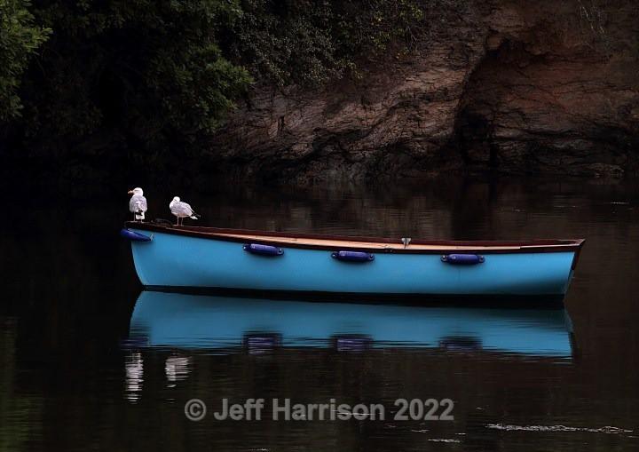 Gulls on Blue Boat (image Blue B 01) - Latest additions