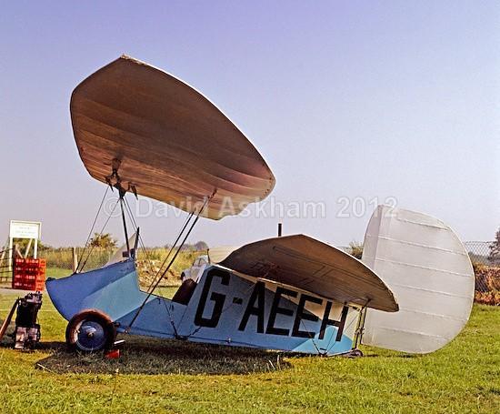Flying Flea - Aircraft