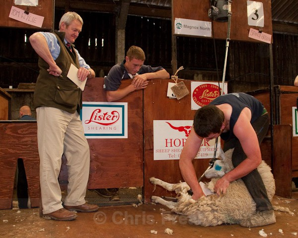 14 - Shearing Competition
