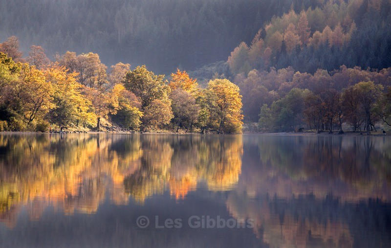 Loch Lubnaig autumn trees4 - Stirling and the Trossachs