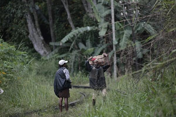 - Sri Lanka wildlife, people & places