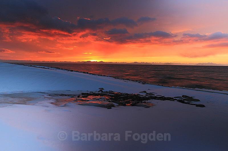 Sunset 7 - Latest Photos