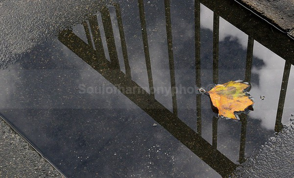 Art Of Puddles - Art And Nature