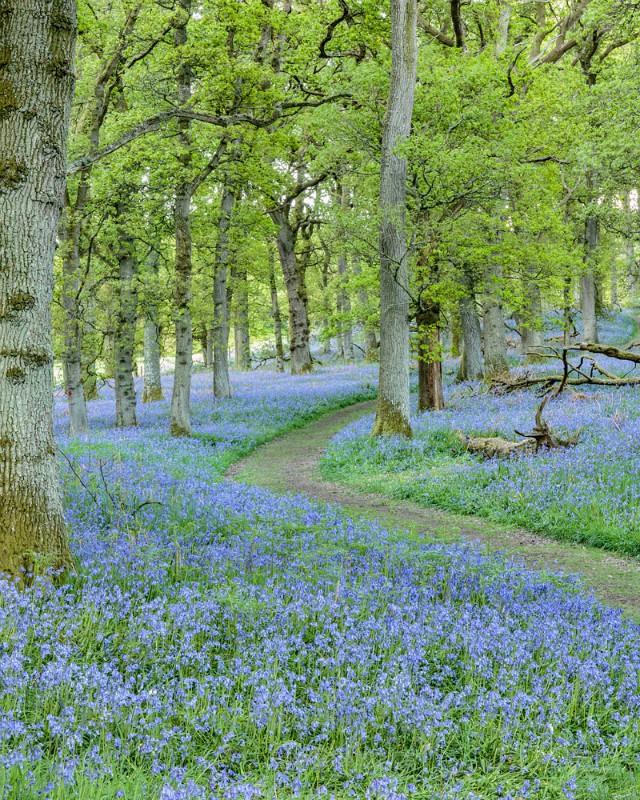 winding - Perthshire