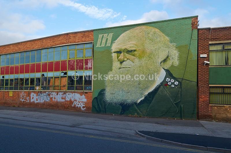 Charles Darwin Street Art Wall Mural - Sheffield, UK - Yorkshire