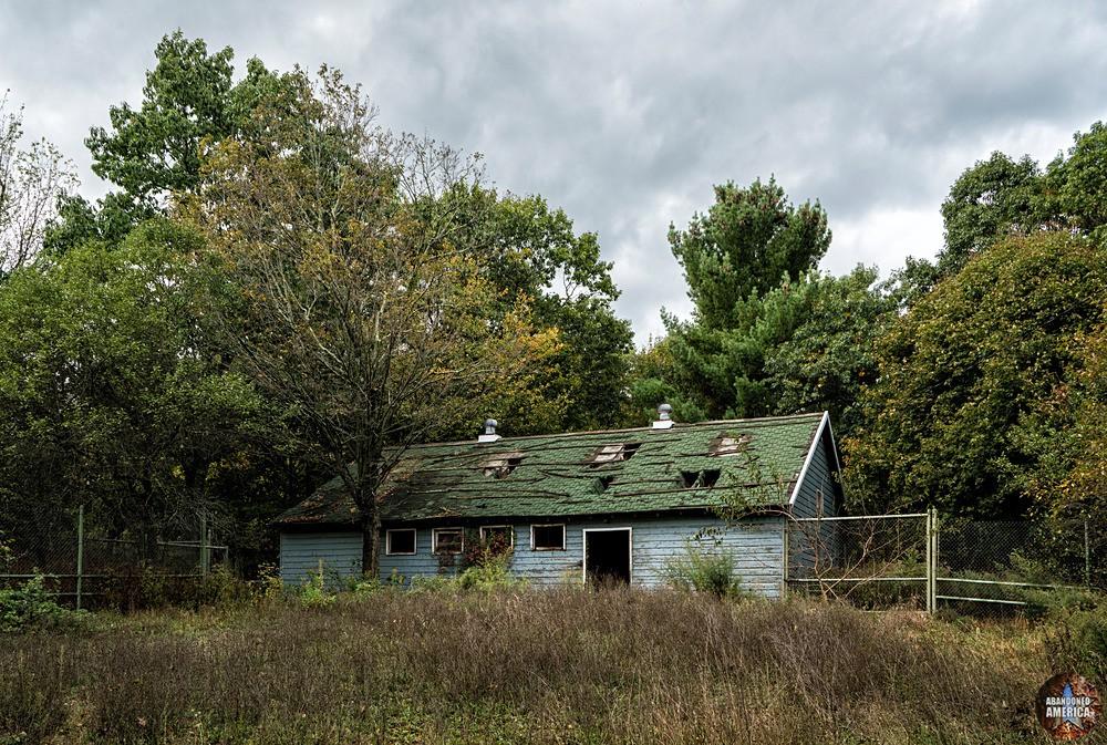Catskill Game Farm (Catskill, NY) | Spider Pen - Catskill Game Farm