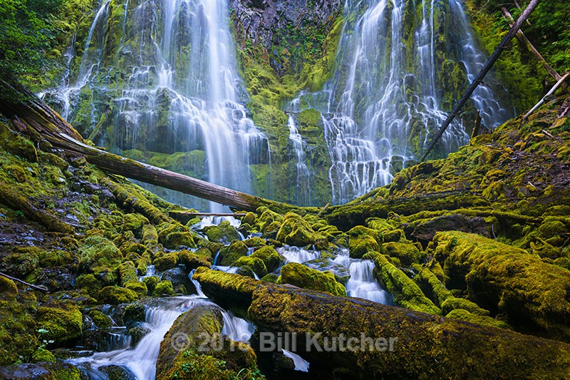 Proxy Falls - Current Show