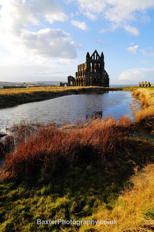 Late Sun At Whitby Abbey - Whitby