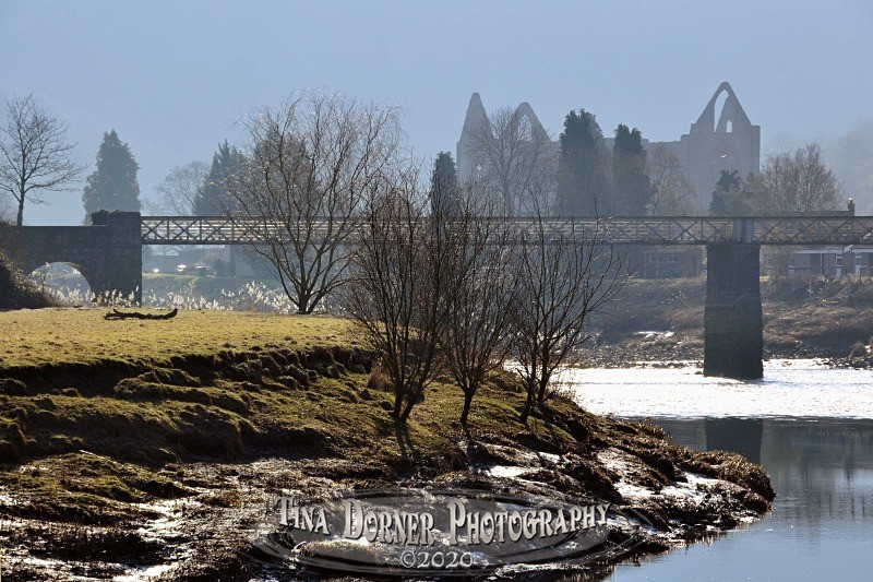 Tintern Abbey and bridge from the River bank by Tina Dorner Photography, Forest of Dean and Wye Valley, Gloucestershire
