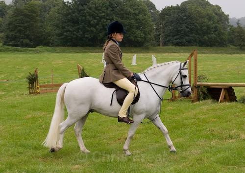 2 - Moniaive Horse Show 2008