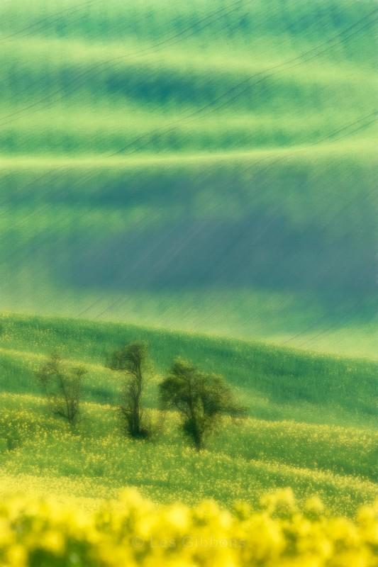 three - Moravia