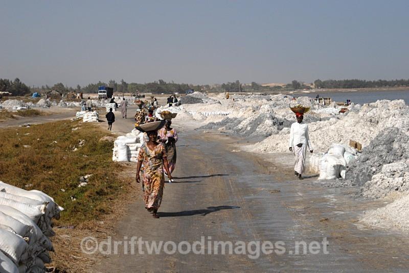 Senegal Lac Rose salt processing by lake side - Salt Production in Senegal