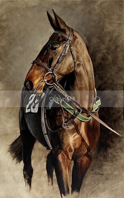 Number 28 - Equine