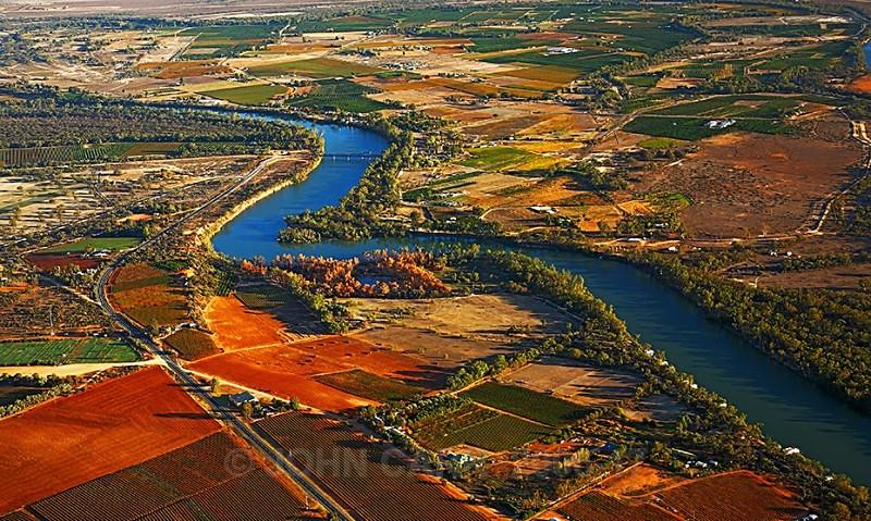 Murray River Bend from a Hot Air Balloon-3872 - AERIAL PHOTOS
