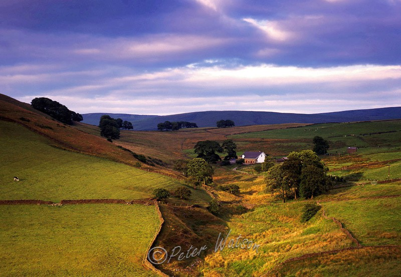 Near Macclesfield Cheshire - England